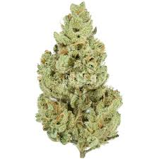 Purchase Super Lemon Haze online